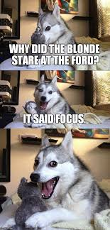 Ford Focus Meme - why did the blonde stare at the ford it said focus meme
