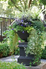 Outdoor Planter Ideas by Fall Annuals Container Planter Front Yard Urn Landscape Design