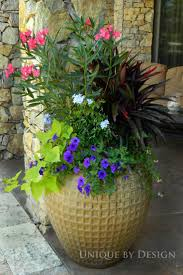 1362 best container gardening images on pinterest pots plants