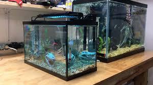 60 watt aquarium light creative ekostore 6 watt multi color 36 led aquarium light for 5