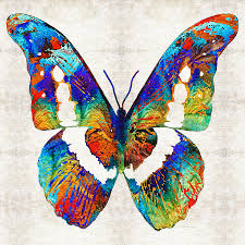 colorful butterfly by painting by