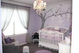 purple baby crib u2013 arunlakhani info