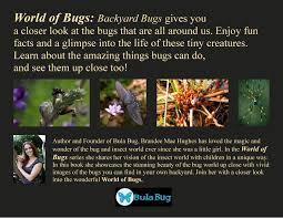 world of bugs u2013 backyard bugs bula bug