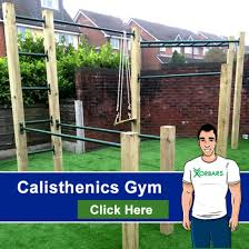 Diy Backyard Pull Up Bar by Calisthenics Outdoor Gym Gym Pinterest Outdoor Gym