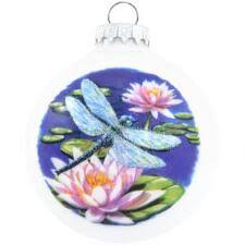 flower insect animal birds flowers insects nature