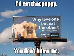 Eat Me Meme - i d eat that puppy you don t know me meme