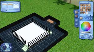 backyard wrestling ring party youtube backyard ideas