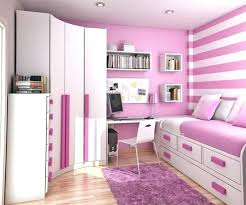pink and zebra bedroom pink bedroom accessories trafficsafety club