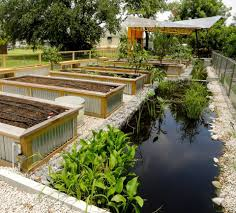 Botanical Gardens New Orleans by Fighting Floodwater To Grow A Garden U2014 And A Healthy New Orleans