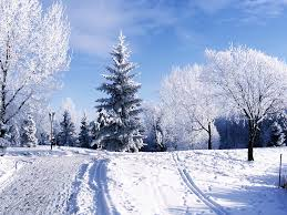 year snow wallpaper u2013 why do conseratives know so about