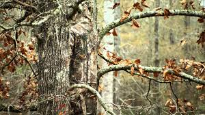 realtree xtra camouflage it s all about you