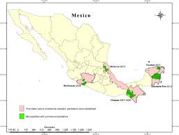 Map Of Michoacan Mexico by Sustainability Free Full Text Drivers And Consequences Of The