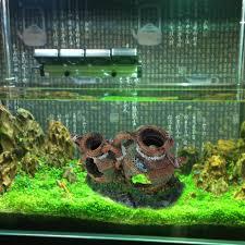 Home Aquarium Decorations Fish Tank Magnificent Fish Tankolesale Photos Concept