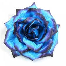 blue and purple flowers blue purple ombre hair flower clip pin and band 3 in 1 polyvore