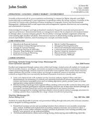 Aviation Resume Examples by 49 Best Management Resume Templates U0026 Samples Images On Pinterest