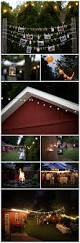 Wedding Backyard Reception Ideas by Maggie And Eric Backyard Weddings Weddings And Wedding