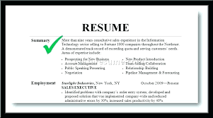 resume summary exles resume summary exles for resume