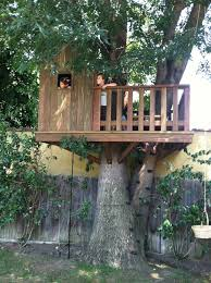 why are tree houses so awesome they are kids only they are