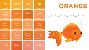 shades of orange names interesting 80 different shades of orange paint decorating