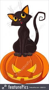 halloween cat halloween cat makeup halloween cat halloween cat