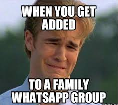 Group Memes - whatsapp group meme informative pinterest meme and humor