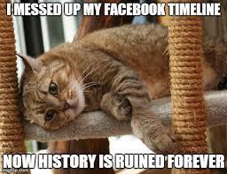 Cat Problems Meme - first world cat problems latest memes imgflip
