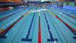 how many laps of an olympic sized pool equal a mile reference com