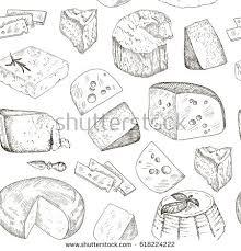 royalty free vector cheese sketch drawing gouda u2026 380534269