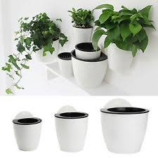 self watering planter ebay