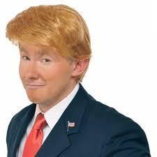 best 25 donald trump wig ideas on pinterest donald trump