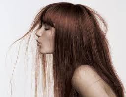 virtual hair colour changer best 25 virtual hair color ideas on pinterest life hacks hair