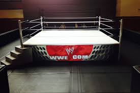 Wrestling Ring Bed by Custom Ring Incomparable Customs