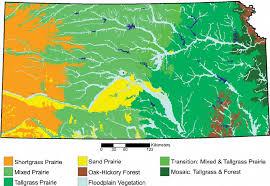 Kansas forest images K chler 39 s 1974 potential natural vegetation kpnv map of kansas png
