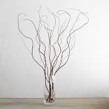 curly willow branches curly willow branches williams sonoma