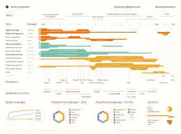 11 best digital resume images on pinterest data visualization