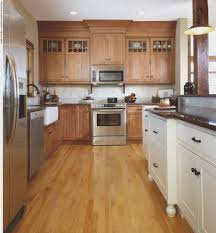kitchen cool how to remodel kitchen cabinets wonderful