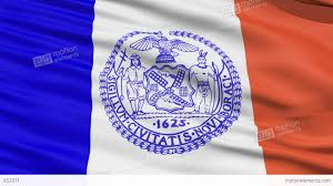 New York Flag American State City Flag Of New York Stock Animation 652071