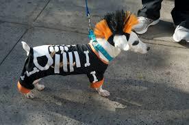 i city halloween new york city halloween parade pushing time