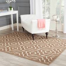 Rugs Indoor Outdoor by Cheap Outdoor Rug Home Design Ideas And Pictures