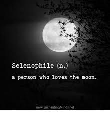 Moon Meme - selenophile n a person who loves the moon wwwenchantingmindsnet