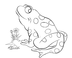 free printable frog coloring pages for kids in itgod me