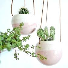 plant wall hangers indoor wall plants indoor indoor wall plant pots awesome decoration wall