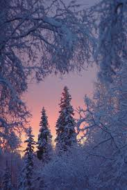 best 25 winter backgrounds ideas on phone