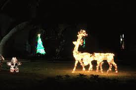 Deer Christmas Lights Rock Oak Deer Around The Block Merry Christmas Y U0027all