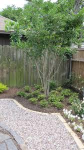 Backyard Ground Cover Ideas by 250 Best Gravel In The Garden Images On Pinterest Garden Ideas