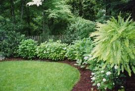 beautiful backyard dreams pinterest gardens beautiful and decks