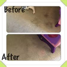 Colorfast Tile And Grout Caulk Amazon by Amazing Use A Magic Eraser To Clean Very Old Carpet Stains Only