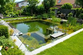 Backyard Swimming Pool Ideas Small Swimming Pool Ideas And Pictures Inspirations Backyard Pools