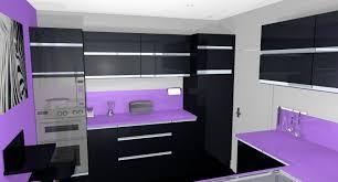 cuisine pourpre decoration cuisine peinture couleur