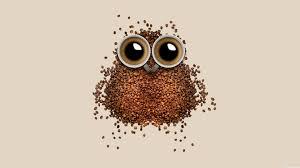 Art Owl Meme - coffee owl meme wallpaper